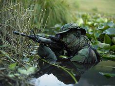 """U.S. Navy Seal Crosses Through A Stream"""