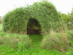 willow house Auerworld Willow Palace by Sanfte Strukturen is a natural structure made of living willow rooted in the ground.