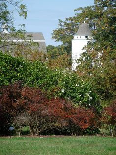 Caumsett - Dairy Complex from Walled Garden