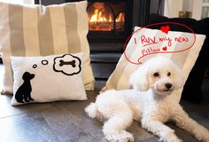 How to Put a Silhouette of Your Dog on a Pillow