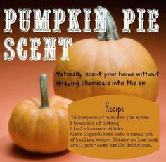 Pumpkin Pie Scent to make your house smell good for fall. Homemade Potpourri, Potpourri Recipes, Stove Top Potpourri, Simmering Potpourri, Fall Potpourri, Air Recipe, Do It Yourself Decoration, Room Scents, Pot Pourri