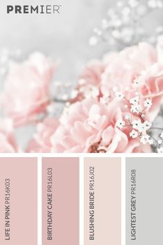 Beautiful flower color palette Life in Pink: Birthda . Beautiful blossom colour palette Life in Pink: Birthda. - Beautiful blossom colour palette Life in Pink: Colour Pallete, Colour Schemes, Pink Palette, Beach Color Palettes, Paint Colors For Home, House Colors, Pink Paint Colors, Wall Colours, Soft Colors