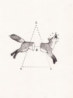 Fox bisect by Peter Carrington
