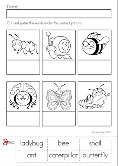 Kindergarten SPRING Math & Literacy unit. 93 pages in total. A page from the unit: Label the insects