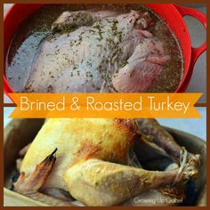 How to Brine A Turkey.  I've heard that this makes your turkey extra moist!  LVCCLD