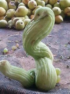 16 Funny-Shaped Fruits And Vegetables That Forgot How To Be Plants - Obst Funky Fruit, Weird Fruit, Strange Fruit, Weird Food, Weird Plants, Unusual Plants, Exotic Plants, Funny Vegetables, Fruits And Vegetables