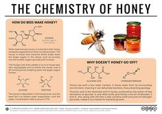 The Chemistry Of Honey (image taken from compoundchem.com)  Honey is a food oddity in that it doesn't spoil. Here's the chemistry behind why, as well as an explanation of how bees make honey: http://wp.me/p4aPLT-qn