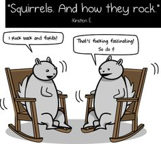 Squirrels ROCK!...OMG my favorite one yet!!! BEST OF ALL TIME!
