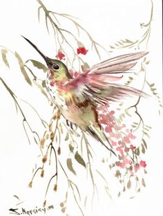 Flying Hummingbird Original watercolor apinting 12 by ORIGINALONLY, $34.00