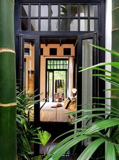 Loving the black trim with the green of the plants..