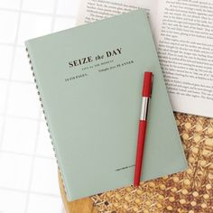 Customisable weekly and monthly Seize the Day planner $28.95