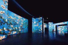 Van Gogh Alive Digital Art Exhibit