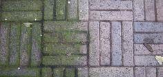 Het schoonmaken van je terrastegels wordt veel minder moeilijk met dit superhandige trucje. Dit heb je nodig: 5 eetlepels sod...