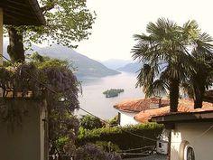 casafile - Ferienwohnungen Tessin: Villa Cresta Bianca, Ronco Sopra Ascona, Ascona - Ferienwohnung, Ferienhaus, Immobilien Tessin