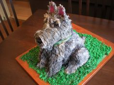 The cake artist did a wonderful job on the shape. She says it is her first dog sitting up. The coloring makes me think Schnauzer, but a black Scottie sitting in the sunlight would reflect light as grey or white streaks.   What do you think?     Source: http://cakecentral.com/gallery/2227556/scottish-terrier-cake