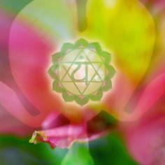 Heart Chakra Photo Collage by ChakraSpirit on Etsy