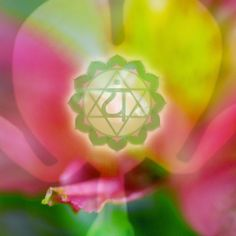 Heart Chakra Photo Collage by ChakraSpirit on Etsy