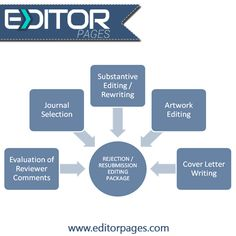 Professional editors for dissertations