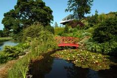 Teviot Water Gardens Kirkbank House, Eckford, Kelso, Scottish Borders. One of my favourite places to be.