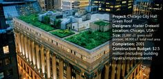 How The Chicago City Hall Green Roof is Greening the Concrete Jungle. A great article for Landscape Architects Network by Rose Buchanan on the importance of green roofs in the city.
