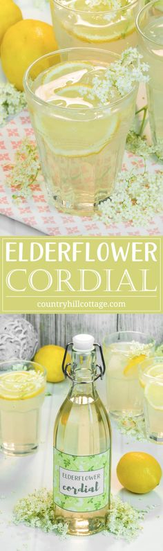 If you're looking for a summer drink idea, make refreshing elderflower cordial, a wonderfully fragrant lemonade made from the flowers of the elder tree. Aside from a handful of flowers, you only need Elderberry Flower, Elderflower Champagne, Prosecco, Spring Recipes, Easter Recipes, Refreshing Drinks, Summer Drinks, Cordial Recipe, Recipes