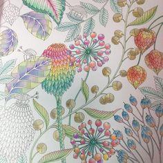 "tropical wonderland colouring book"""