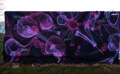 Graffiti's amazing street art.  He uses a wide variety of styles - but his x-ray spray paint technique is great!