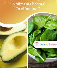 Cantaloupe, Fruit, Food, Vitamins, Plant, Essen, Meals, Yemek, Eten