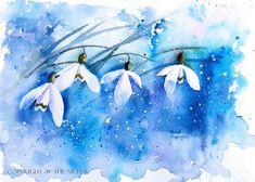 Snowdrops Rachel McNaughton