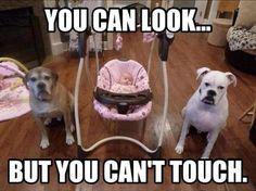 no touchy.