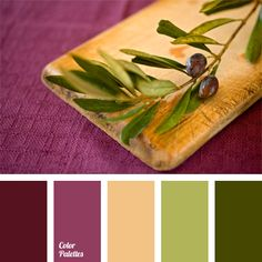 Strong and bright color palette built on a contrasting combination of olive and green with dark crimson and pinkish lilac. A shade of beige balances and dilutes the palette. In interior design it is suitable for a kitchen, a living room or a study of an ambitious and successful person. In clothes it can be used for bright shirts, ties and accessories.