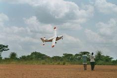 aeroport de basankusu Congo, Bird, Birds