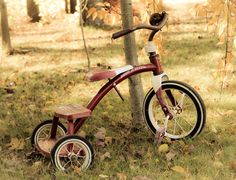 Vintage Radio Flyer Tricycle, Vintage Bicycle, Toys from the Past, Vintage Toys 8 x 10 Fine Art Photography Childhood Toys, Childhood Memories, Toys R Us Kids, Retro Bike, Radio Flyer, Vintage Bicycles, Old Toys, The Good Old Days, Sport Cars