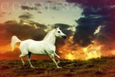 Heaven by startalloverxx.deviantart.com on @deviantART