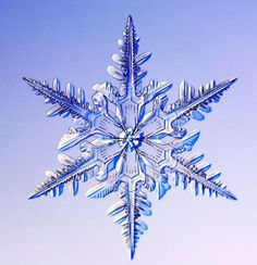 """Snowflake: """"Hast though enterered into the treasures of the snow? Out of who's womb came the ice? and the hoary frost of heaven, who hsth gendered it? Job 29 (Click image to see more snowflake images. Snowflake Images, Ice Crystals, Things Under A Microscope, Winter Beauty, Winter Scenes, Christmas Photos, White Christmas, Merry Christmas, Science And Nature"""