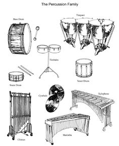 Images of the percussion family!