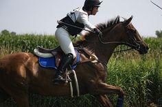 More corn, more cross-country, more fun at Catalpa Corner's Summer Horse Trials. Katlyn McMorris on Viva's Rachel | Flickr - Photo Sharing!