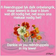 Happy Birthday Meme, Birthday Memes, Goeie More, You Are Special, Afrikaans, True Words, Motivation, Quotes, Friendship