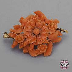 Antique Victorian Coral Pin