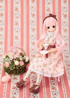 Azone Pureneemo Excute 6th Series Secret Wonderland Chiika 1 6 Fashion Doll | eBay