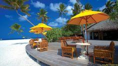 Exotic Paradise Resort