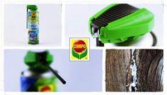 COMPO Wespen-Schaum-Gel-Spray Test mit Video Susi und Kay Projekte