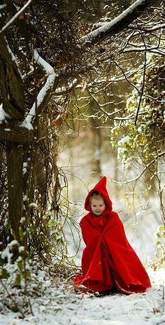 """Midwinter Dream """" Little Red """""""