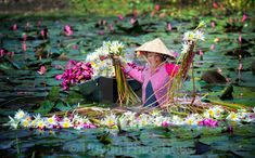 """harvest lily water"" by Huynh Phuc Hau - €70.36"
