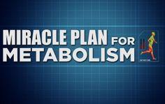 DR. OZ miracle plan for metabolism
