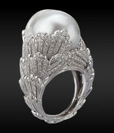 Buccellati ring  ooooooooo  i want!  the design is fantastic!  the mounting appears as if it is shrouding this magnificent pearl