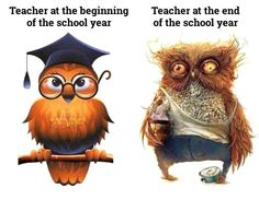 Teacher, before and after the school year