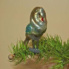 Cbs Antik Alt Glasvogel