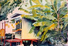 hawaiian watercolor | International Watercolors is pleased to feature the Watercolor ...