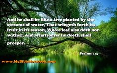 Psalms 1:3 And he shall be like a tree planted by the streams of water, That bringeth forth its fruit in its season, Whose leaf also doth not wither; And whatsoever he doeth shall prosper. Create your own Bible Study Verse Cards at MyBibleNotebook.com